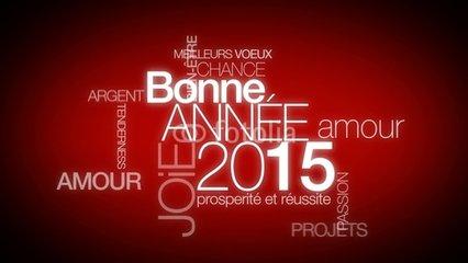 Une bonne année 2015 pour avoir les bons placements!