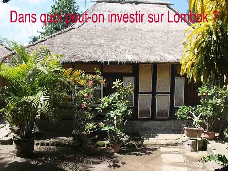 dans quoi investir lombok