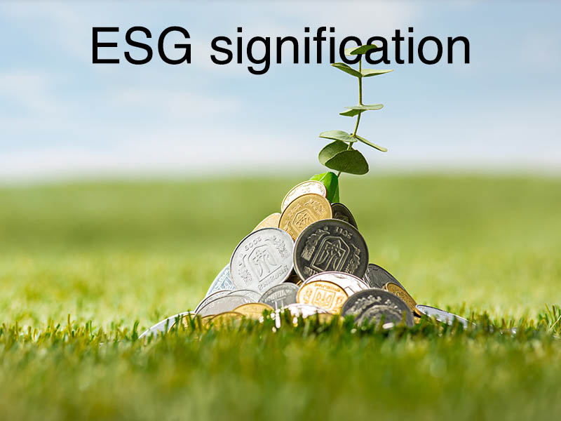 esg signification