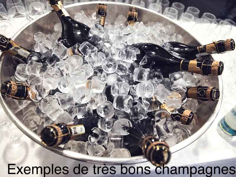 exemple meilleur champagne