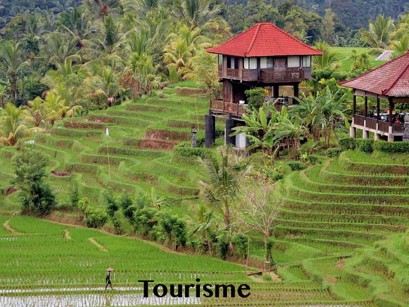 tourisme bali