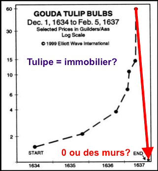 tulipomanie bulle immobilier france