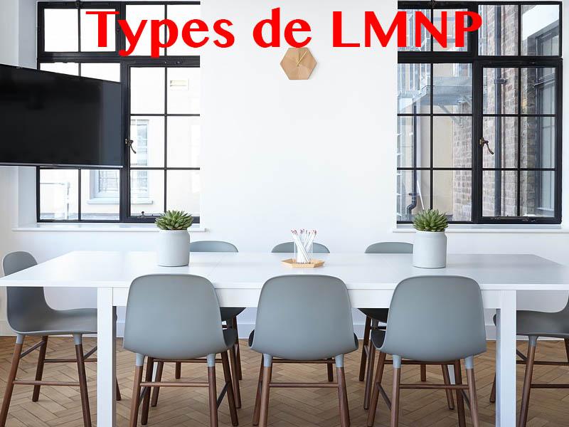 types de lmnp