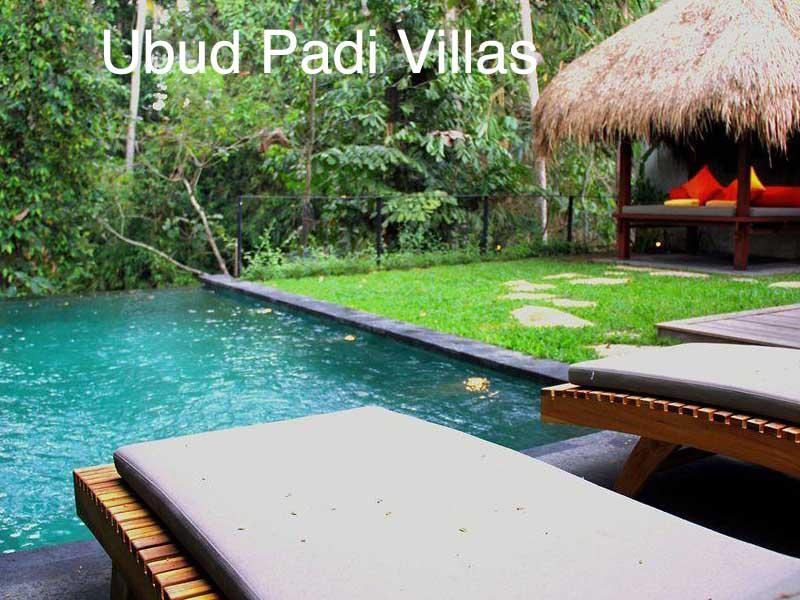 hotel ubud padi villas